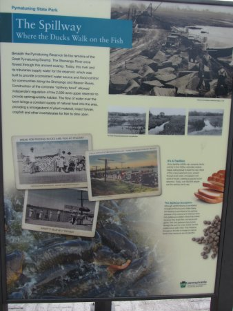 """Linesville Spillway: Pymatuning Spillway Sign touting """"where the ducks walk on the fish"""""""