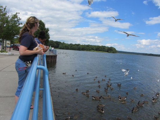 Linesville Spillway: Pymatuning Spillway visitors prepare to launch bread to waiting wildlife.
