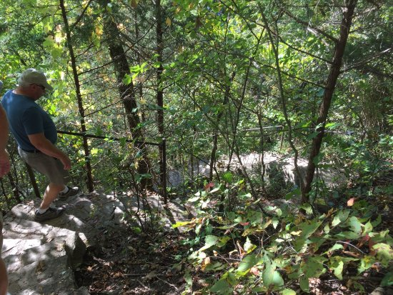 Branson, MO: Lakeside Forest Wilderness Area