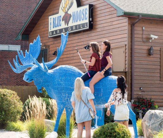 East Grand Forks, MN: Main entrance to the Blue Moose features a metal moose for (possibly not recommended) climbing.