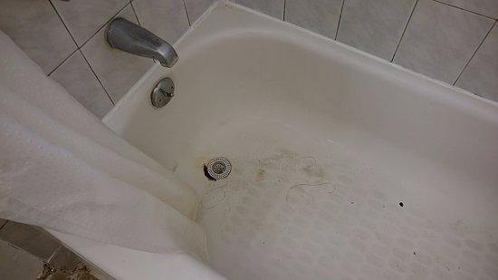 Back Packers Paradise Hostel: dirty bath