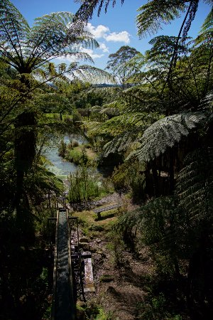 Bay of Plenty Region, New Zealand: Water Wheel