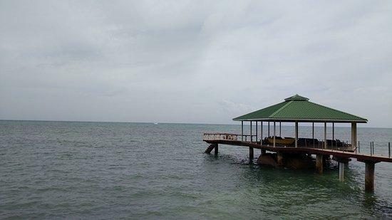 Anse Bois de Rose, Ilhas Seychelles: Coco de Mer - Black Parrot Suites