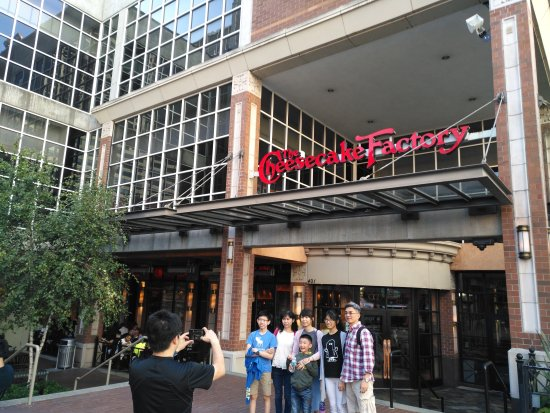 The Cheesecake Factory: Bellevue Square