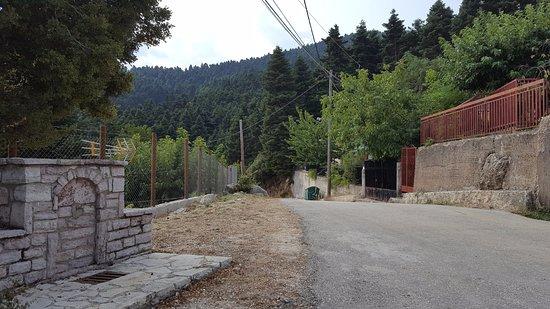 Τσαπουρνιά, Ελλάδα: Tsapournia