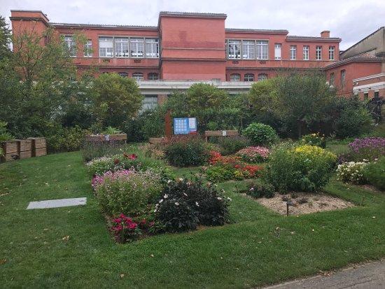 Picture of jardin des plantes toulouse tripadvisor - Restaurant jardin des plantes toulouse ...