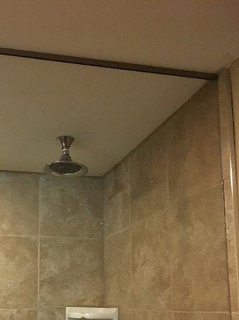 Glouster, OH: Rain head showerhead