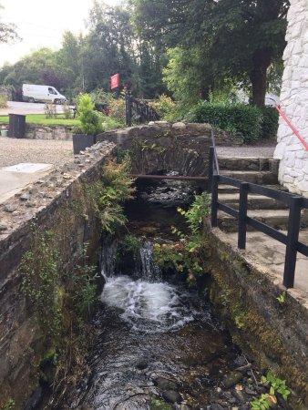 Авока, Ирландия: photo1.jpg