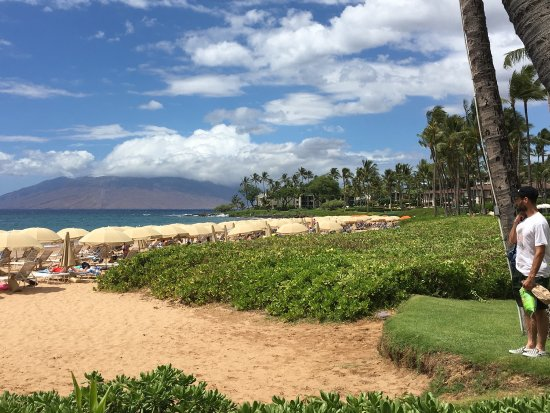 Wailea Beach: photo3.jpg