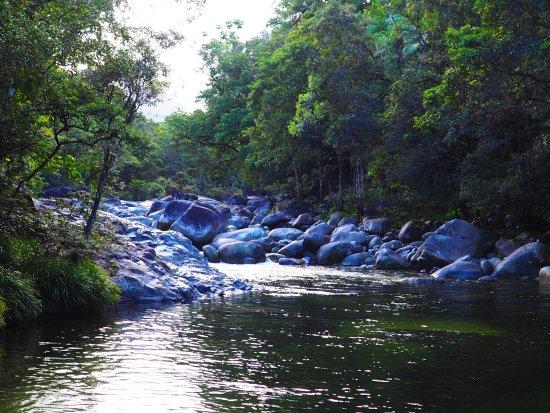 Daintree Region, Australien: Mossman Gorge near lookout