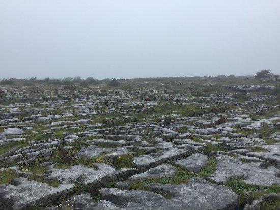 Corofin, Irlandia: The Burren