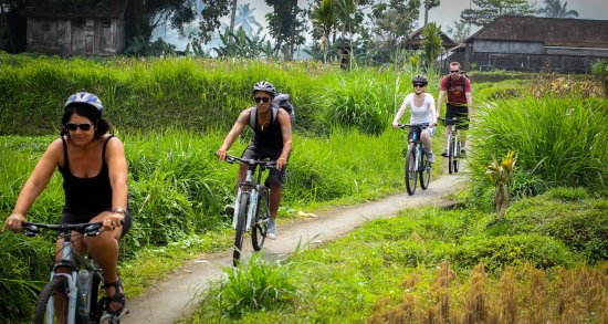Ubud Downhill Cycling Tours