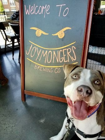 Joymongers Brewing Co.