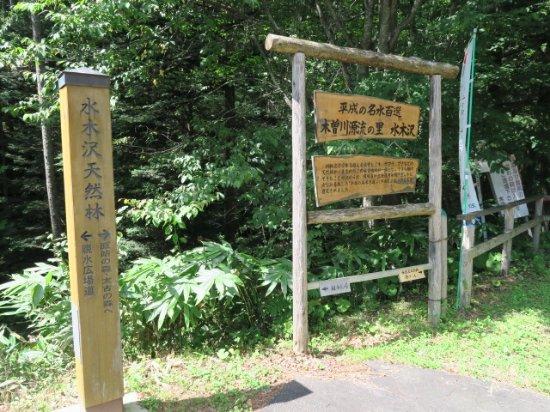 Mizukisawa Forest