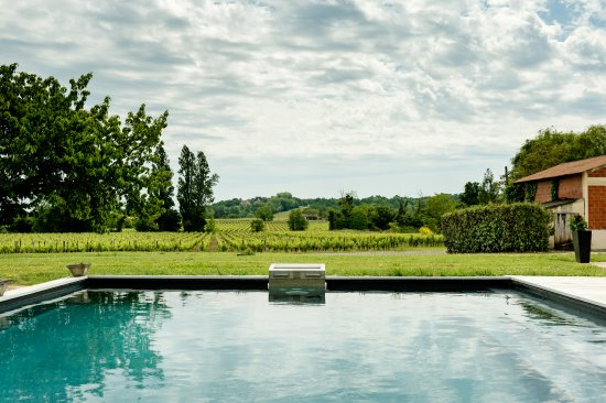 Moulon, Francia: View from poll on the vineyard