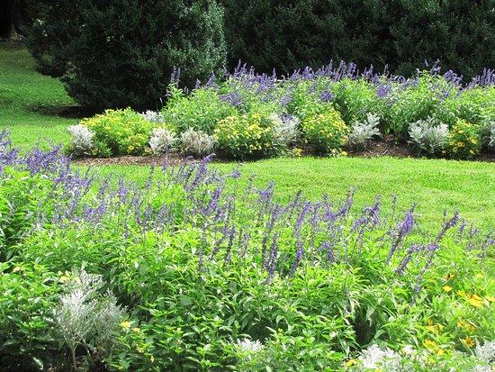 ลีส์บูร์ก, เวอร์จิเนีย: gardens at Morven Park