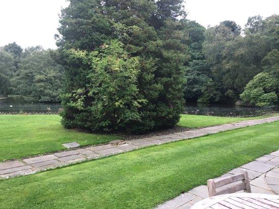 Mottram St. Andrew, UK: Mottram hall grounds