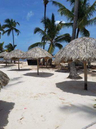 Dreams Palm Beach Punta Cana Dominican Republic All Inclusive Resort Reviews Photos Price Comparison Tripadvisor