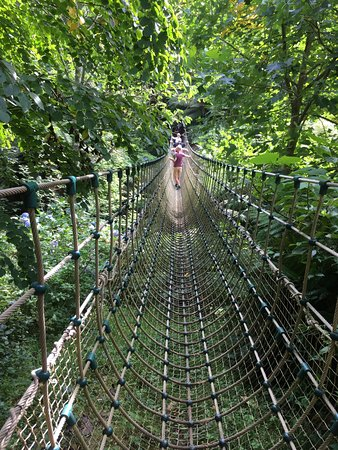 St Austell, UK: The rope bridge is worth a go!