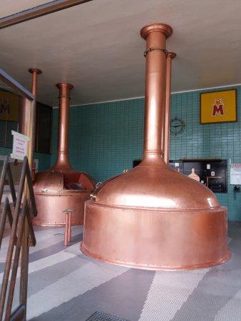Hochfelden, France : La salle de brassage