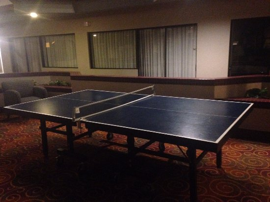 Lima, OH: Ping Pong table