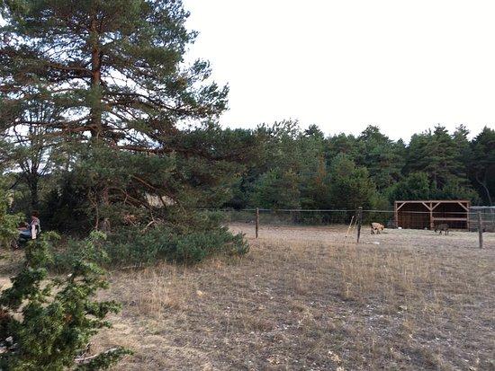 Eco-camping du Larzac (Millau, France - Aveyron) - Campground ...