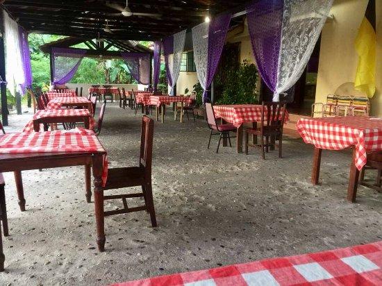 El Cactus Bistro and Bar Photo
