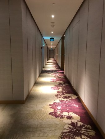Hotel modern dan nyaman