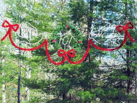Lake Julian Park: xmas decorations at front part of park