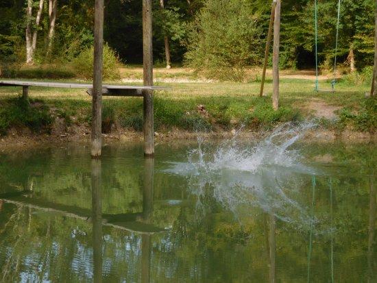 Camping Naturiste Le Couderc: zwemvijver