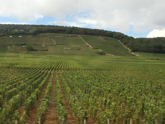 Vougeot, Frankrijk: photo1.jpg