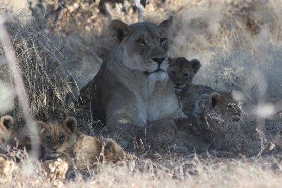 温得和克10日纳米比亚高度导游照片