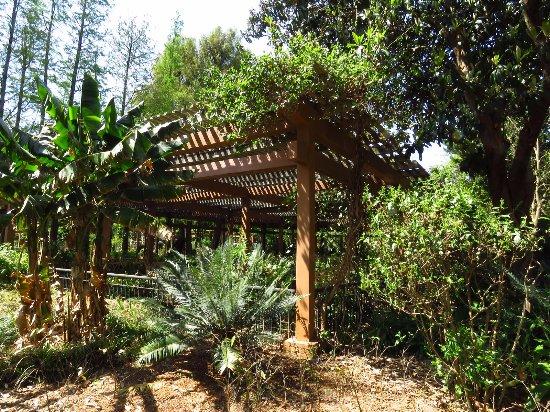 Kunming Botanical Garden: 百草園