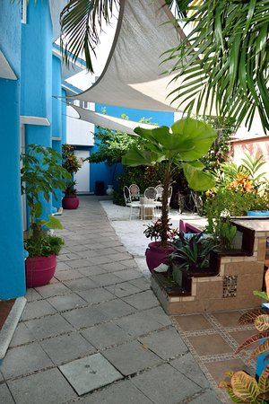 Villas Las Anclas : Pretty courtyard