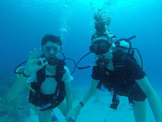 Caribe Azul : Durante o mergulho