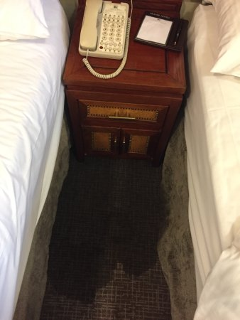 Grange City Hotel: photo2.jpg