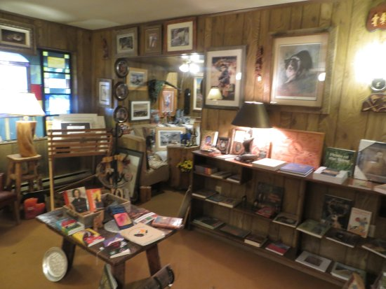 Springerville, AZ: Local History Books Abound...