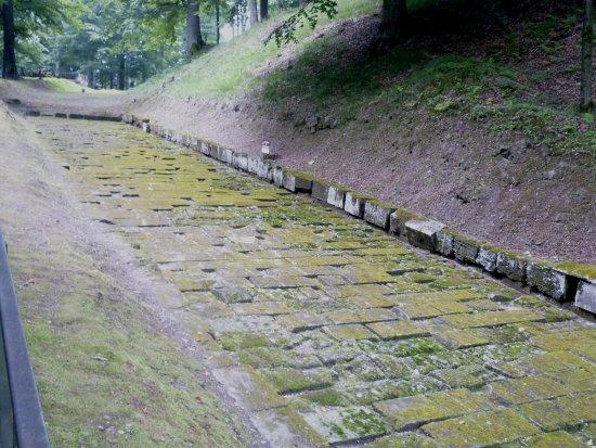 Sarmizegetusa, Romania: The paved road