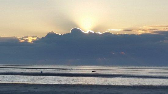 Skaket Beach : 20170908_184124_large.jpg