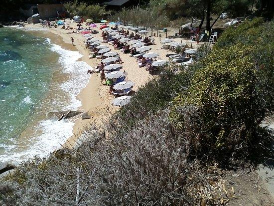 Isola Del Giglio, Italy: la spiaggia delle caldane