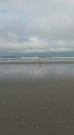 North Wildwood Beach: FB_IMG_1504984529118_large.jpg