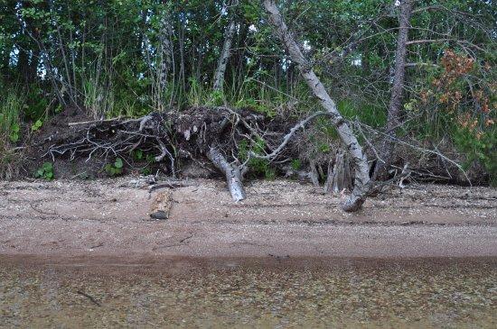 Saare County, Estland: Вид на берег