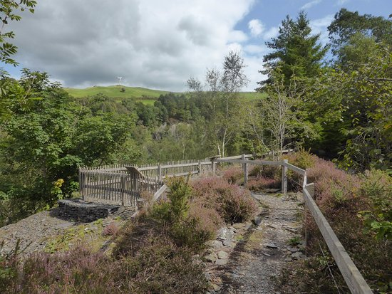 Machynlleth, UK: More Quarry Trail