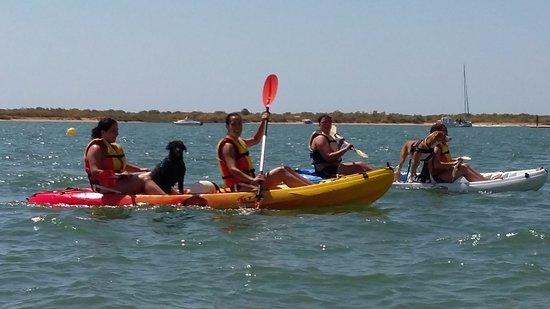 Rumbo Sur Paddle Surf