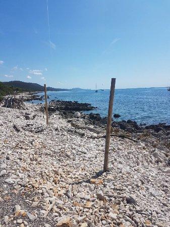 Dugi Island, Kroatien: image-0-02-04-9db82666e0c698e8be4a7e5e5324b341d91c765edaabf01edb97c0dbe9f81c69-V_large.jpg