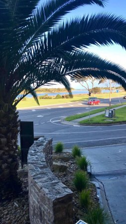 Anglesea, Australia: photo1.jpg