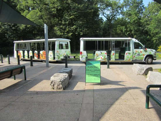 Point Pelee National Park : Complimentary shuttle to the tip.