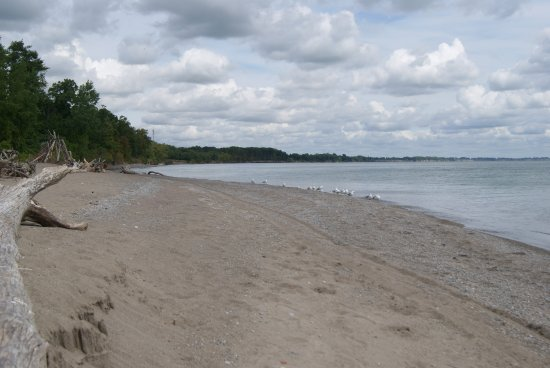 Beach at Wheatley day use area.