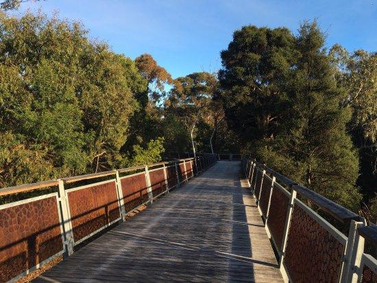 Clayton, Austrália: Jock Marshall Reserve