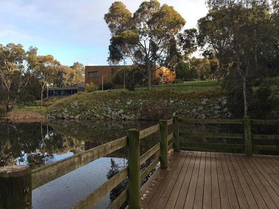 Clayton, Australia: lovely lake at entrance to Jock Marshall reserve